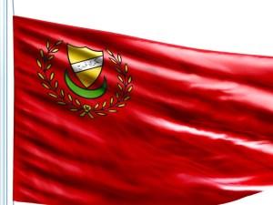 Kedah flag 3