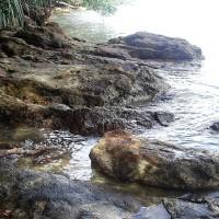 Water Images - Teluk Buih