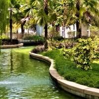 Garden Within A Hotel (2)