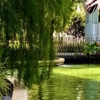 Garden Within A Hotel