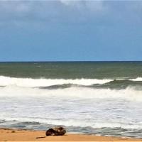Pantai Teluk Gadung, Dungun