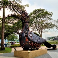 The Hornbill of Puteri Harbour - A Picture Story